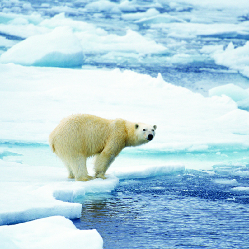 Climate Futures: A Public Debate