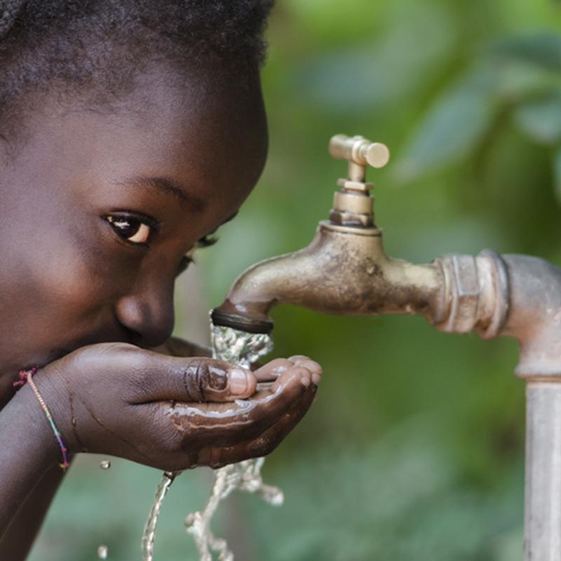 Water, The Elixir of Life