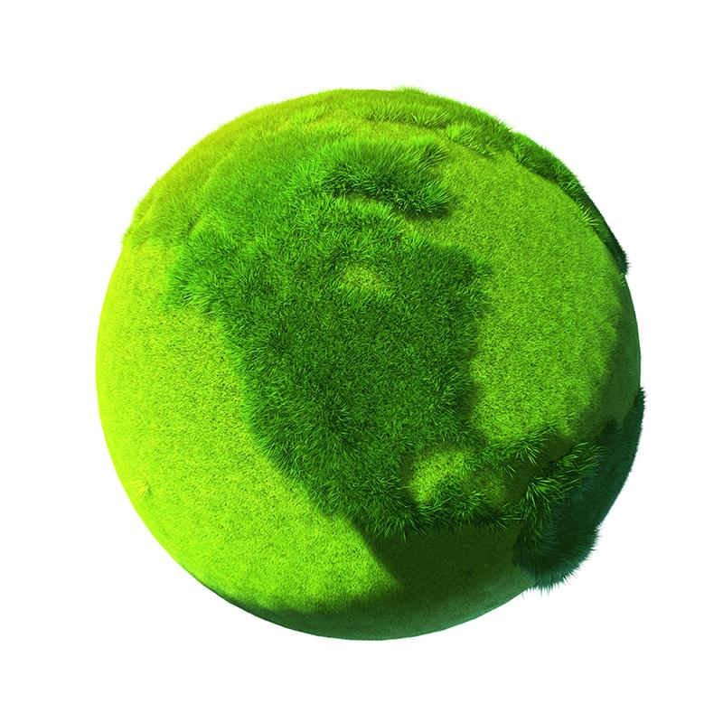 Greening the developing world