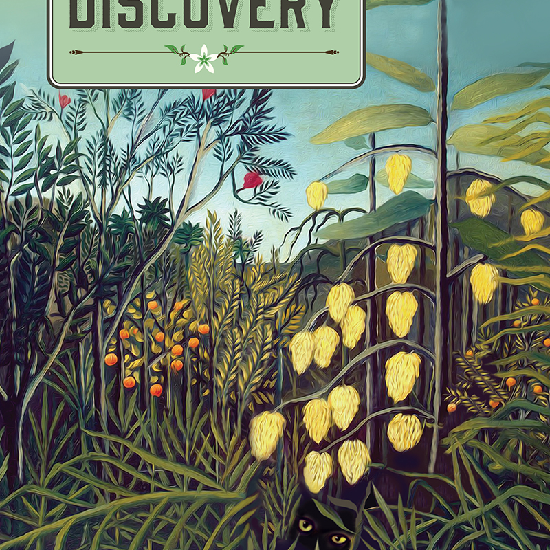 Dr Stirlingshire's Discovery