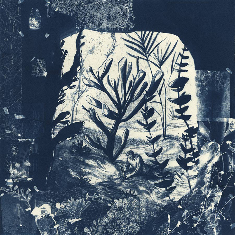 Branching Out: A Guided Botanical Drawing and Linocut Relief Printing Workshop