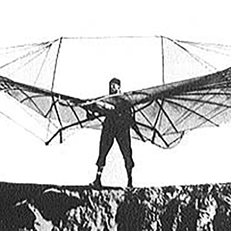 The Ornithopter