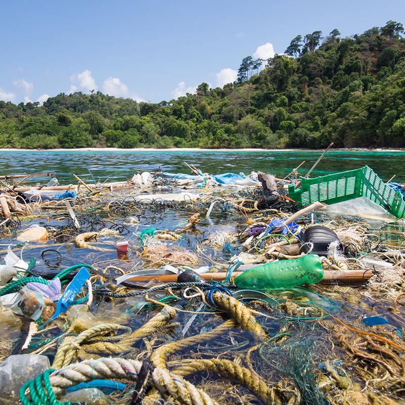 Oceans in Crisis: A Public Debate